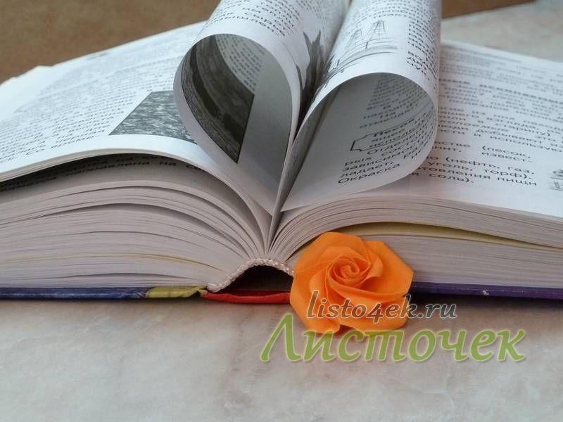 Роза - маленький романтичный подарок