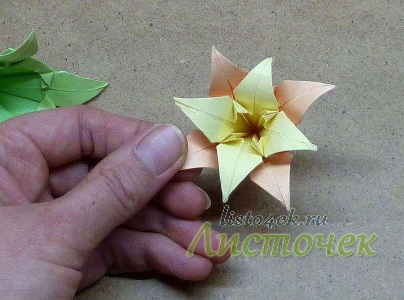Лепестки нижнего цветка должны располагаться между лепестками верхнего