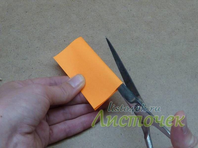 Разрезаем квадрат пополам