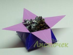 Коробочка - звезда (дзунако)