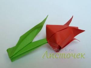 Стебель для цветка тюльпана