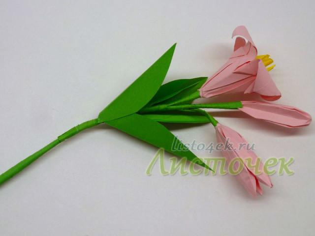 Готовая ветка лилии