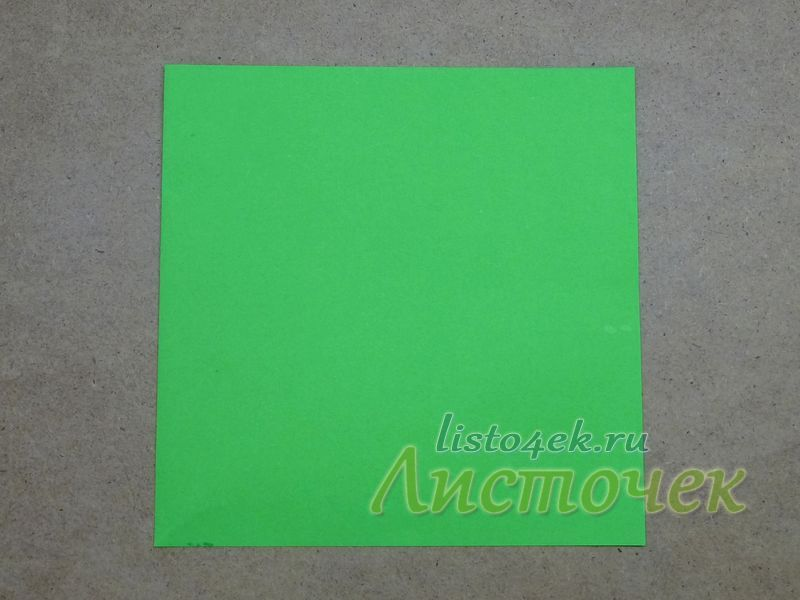 Для того чтобы сложить такой чашелистик нам понадобится квадратный лист бумаги зеленого цвета