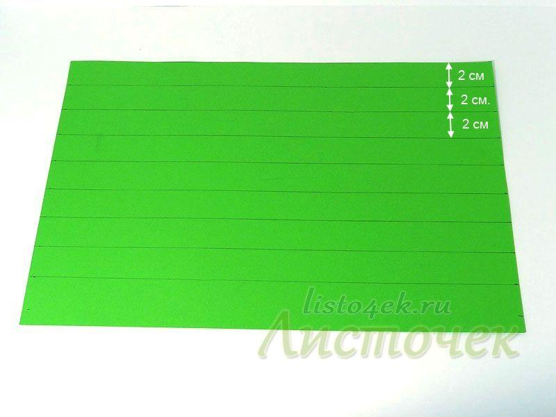 Лист цветной бумаги размером А4 и размечаем его на полосы шириной 2 см.